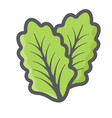 lettuce colorful line icon vegetable salad leaf vector image