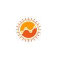 stats sun logo icon design vector image vector image