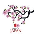 tree traditional japanese icon design vector image vector image
