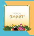 tropical summer square frame design vector image vector image