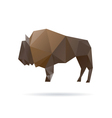 Buffalo abstract isolated on a white backgrounds vector image vector image