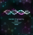 genetic engineering template dna molecules spiral vector image vector image