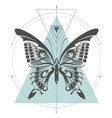 machaon butterfly geometric vector image vector image