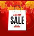 shiny autumn leaves sale banner business discount vector image