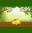 wooden floor with mangos and nature background vector image