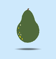 Avocado Fruit Icon vector image