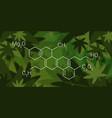 cbd cannabidoil thc chemical formula cannabis vector image