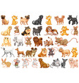 set pet character vector image vector image