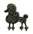 silhouette of a dog poodle doodle style cartoon vector image