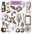 vintage perfumery and cosmetics set vector image vector image
