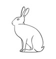 line art animal hare icon vector image