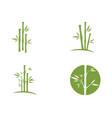 bamboo logo template icon vector image vector image