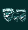 sharks mascot logo design vector image