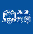 bear mascot logo design vector image vector image
