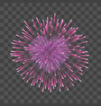 beautiful heart-firework pink romantic firework vector image vector image