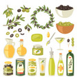 olive oliveoil bottle with virgin oil and vector image