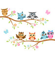 owls on a branch colorful cute friends vector image vector image