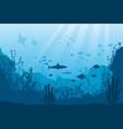 underwater ocean fauna deep coral reef algae vector image vector image