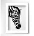 artwork head profile zebra digital sketch of vector image vector image