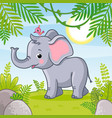 baby elephant stands in a clearing