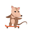 cute opossum riding on skateboard adorable wild vector image vector image