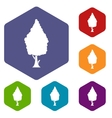 Cypress icons set vector image vector image
