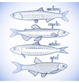 Graphic small fish collection vector image vector image