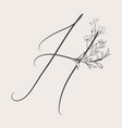 hand drawn flowered h monogram and logo vector image vector image