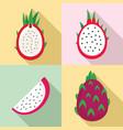 pitaya icons set flat style vector image vector image