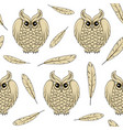 seamless pattern with owls and feathers vector image