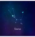 taurus sign stars map zodiac constellation on vector image vector image