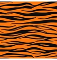 Tiger Print Pattern vector image vector image