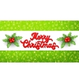 Xmas 3d lettering inscription and holly on green vector image vector image