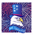 ink hand drawn background with eagle in tall hat vector image