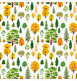 Autumn forest trees pattern a woodland background