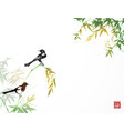 bamboo trees and two magpies birds traditional vector image vector image