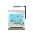 cartoon home aquarium with vector image vector image