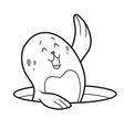 cute seal vector image