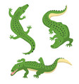 green alligators set wild animal isolated vector image vector image