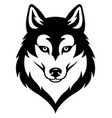 husky dog head vector image vector image