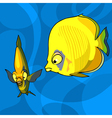 two yellow cartoon tropical fish vector image vector image