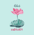 watercolor lotus flower isolated vector image vector image