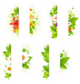 Collection Of Bunches Of Flowers And Leaves With vector image vector image
