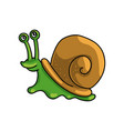 cute colorful green snail with brown house shell vector image vector image