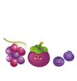 cute fruits grape mangosteen blueberry vector image vector image