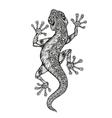 Ethnic ornamented salamander Vintage graphic vector image