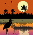 Everglades vector image vector image