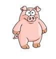 Fat happy pink cartoon pig vector image vector image