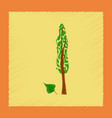 flat shading style plant populus vector image vector image