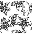 seamless pattern with black and white aquilegia vector image vector image